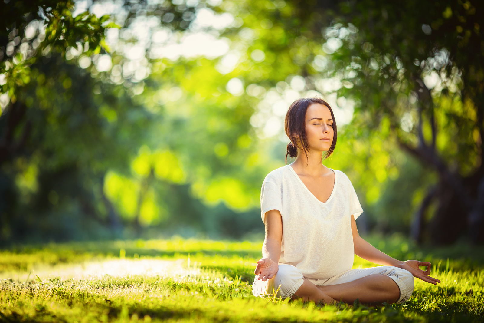 Mindfulness Meditation Programs